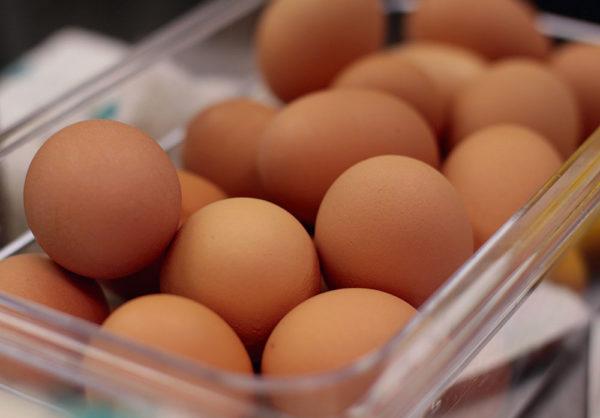 automação na desinfecção de ovos