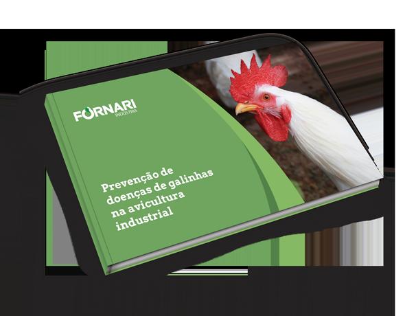 Doenças de galinhas: Prevenção na avicultura industrial